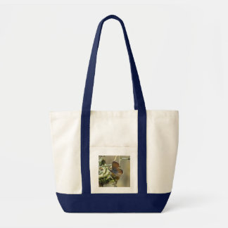 Saco azul da borboleta do pigmeu ocidental sacola tote impulse