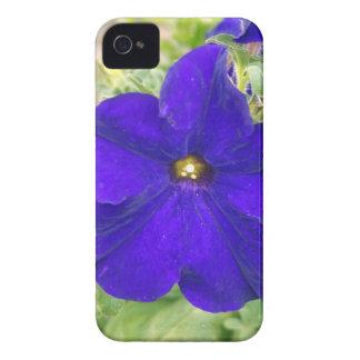 saco da flor capas para iPhone 4 Case-Mate