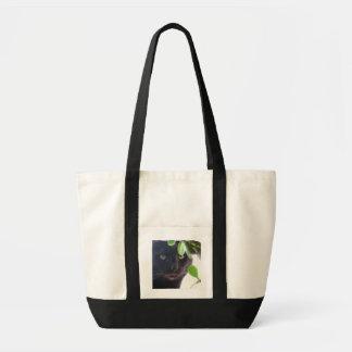 Saco do gato bolsa