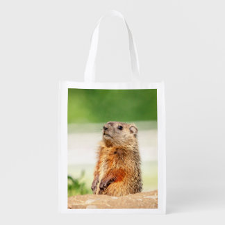 Sacola Ecológica Groundhog novo
