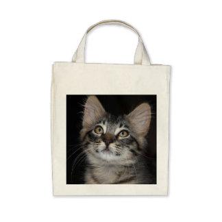 Sacola orgânica do mantimento da inocência do gati bolsa para compra