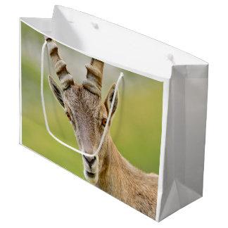 Sacola Para Presentes Grande Retrato de um íbex