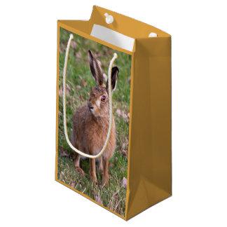 Sacola Para Presentes Pequena Bom saco do presente do dia da lebre