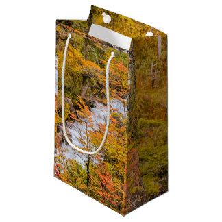 Sacola Para Presentes Pequena Cena colorida da paisagem da floresta, Patagonia