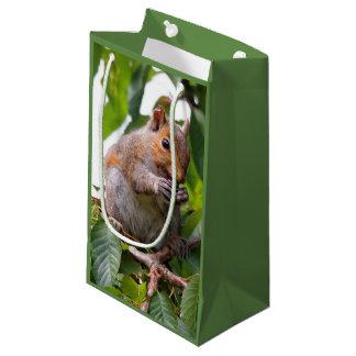 Sacola Para Presentes Pequena Esquilo de cinza oriental bonito de colheita de
