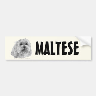 Sadie, maltês adesivos