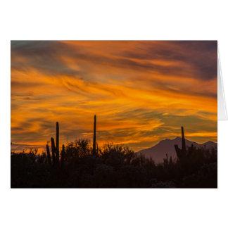 Saguaros do cartão do deserto do por do sol no céu
