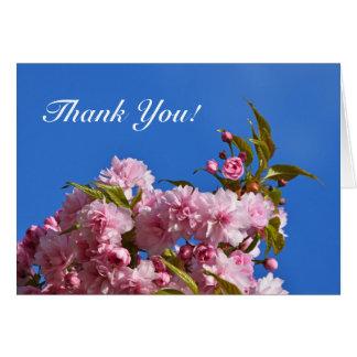 Sakura floresce cartões de agradecimentos