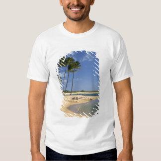 Salgue o parque da lagoa situado na ilha de Kauai Camisetas