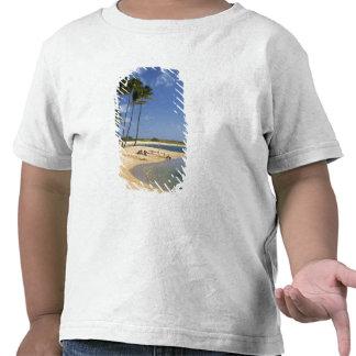 Salgue o parque da lagoa situado na ilha de Kauai Tshirts