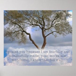 Salmo 139: Eu sou criado temìvel e maravilhosament Posteres