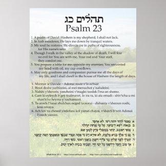 Salmo 23 em inglês, em hebreu, e a transliteração poster