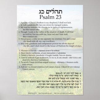 Salmo 23 em inglês, em hebreu, e a transliteração pôster