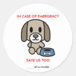 Salvar a emergência do cão
