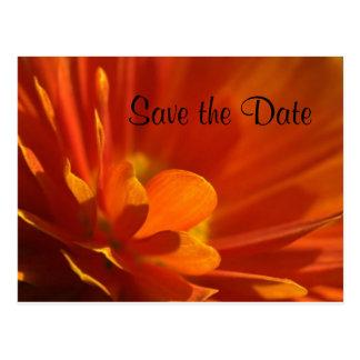 Salvar a flor da laranja da data cartão postal