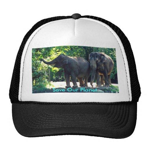 Salvar nosso chapéu do planeta bonés