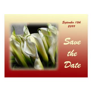 Salvar o cartão da data - lírios de Calla brancos