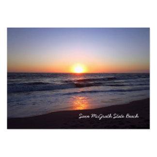 Salvar o cartão de visita da praia de estado de Mc