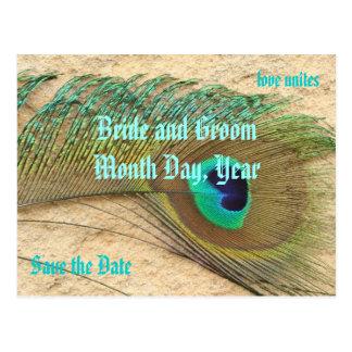 Salvar o cartão do tema do pavão da data