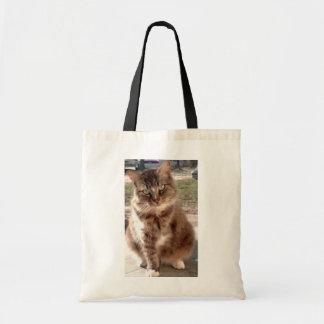 Salvar um gato, salvar o planeta bolsa tote