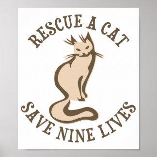 Salve umas economias do gato nove vidas pôster