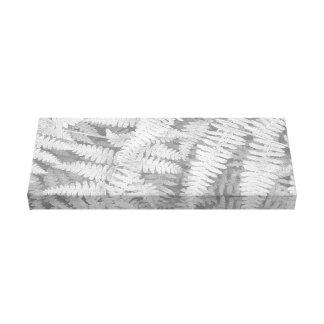 Samambaia em preto e branco na lona envolvida impressão em tela