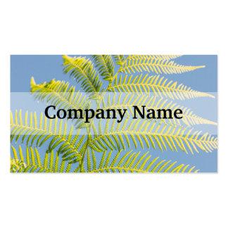 Samambaia verde-clara em um fundo azul cartão de visita