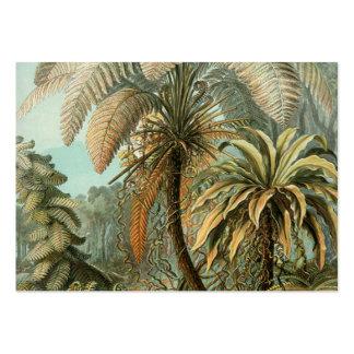 Samambaias e palmeira do vintage botânicas cartão de visita grande