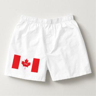 Samba-canção Cara canadense da folha de bordo