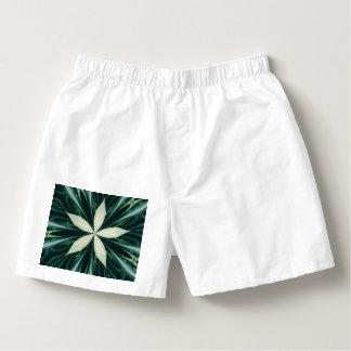 Samba-canção Folhas do branco em um caleidoscópio verde da