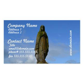 Saraiva Mary Modelos Cartao De Visita
