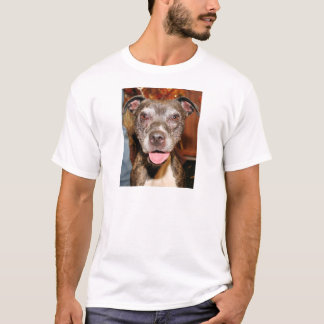 Sasha - Pitbull - Photo-4 Camiseta
