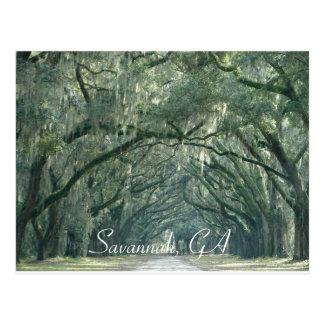 Savana, cartão de GA Cartão Postal