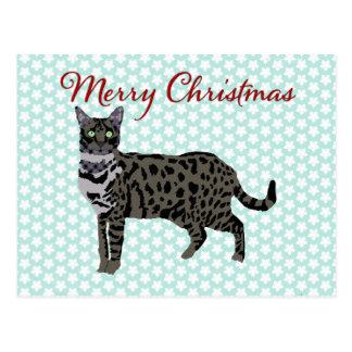 Savana Cat Blue Star Postcard Christmas