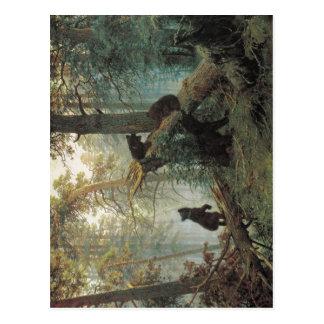 Schischkin sumário, Iwan Iwanowitsch Savitsky, Kon Cartão Postal