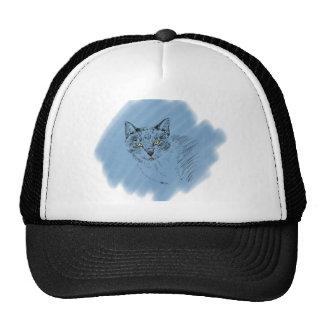 Scribble legal do gato no fundo azul boné
