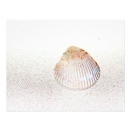 seashell da luz da parte traseira do escudo do panfletos personalizado