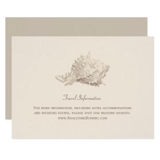 Seashell do marfim do cartão de informação   do