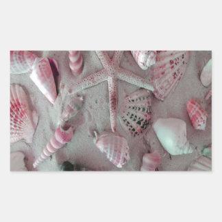 Seashells bonitos adesivo retangular