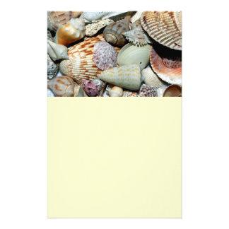 seashells modelo de panfletos