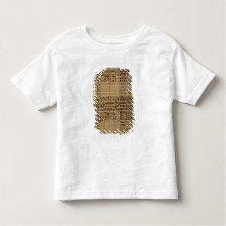 Secundum do nostri J.C. de Passio Domini Tshirts