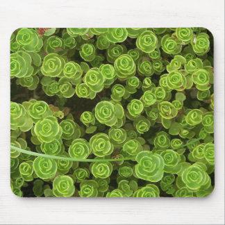 Sedum verde Mousepad 2