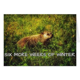 Seis mais semanas do cartão do inverno