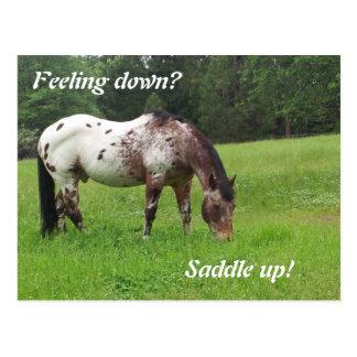 Sele acima o cartão do cavalo