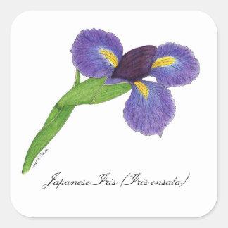 Selo botânico da flor da íris japonesa adesivo quadrado