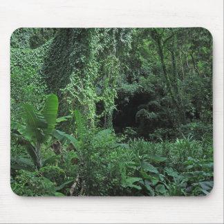 Selva havaiana mousepad