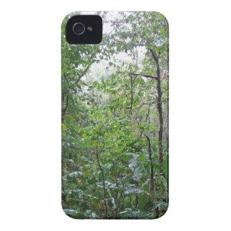 selva selvagem capinhas iPhone 4