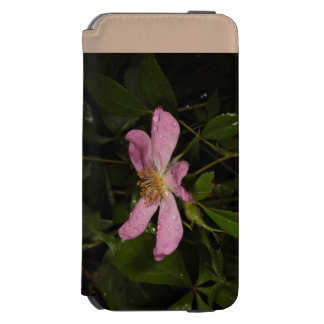 Selvagem aumentou capa carteira incipio watson™ para iPhone 6