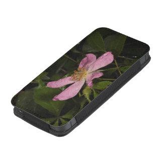 Selvagem aumentou bolsinha de celular