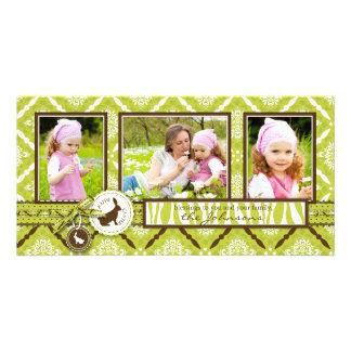 Selvagem sobre o cartão do trio da foto dos coelho cartão com foto